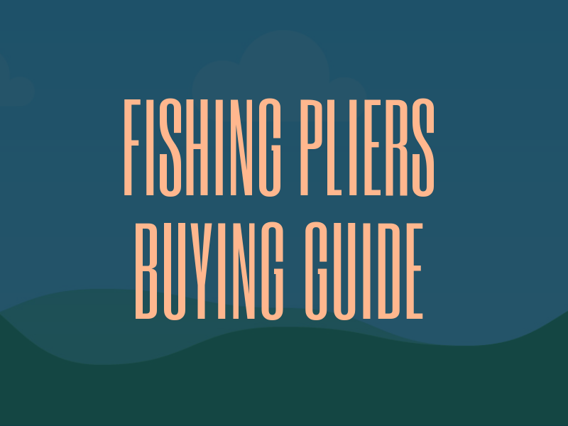Best Value Fishing Pliers Guide