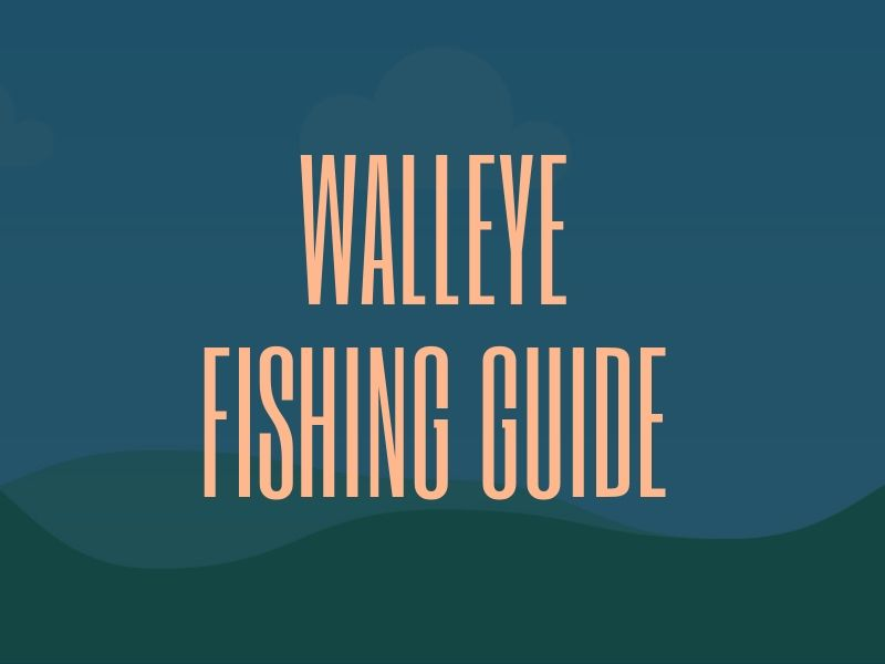 Walleye Fishing Tip Guide