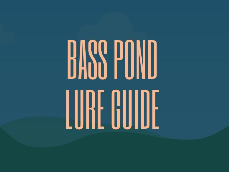 Bass Lures for Ponds