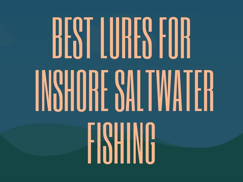 Best Lures for Inshore Saltwater Fishing