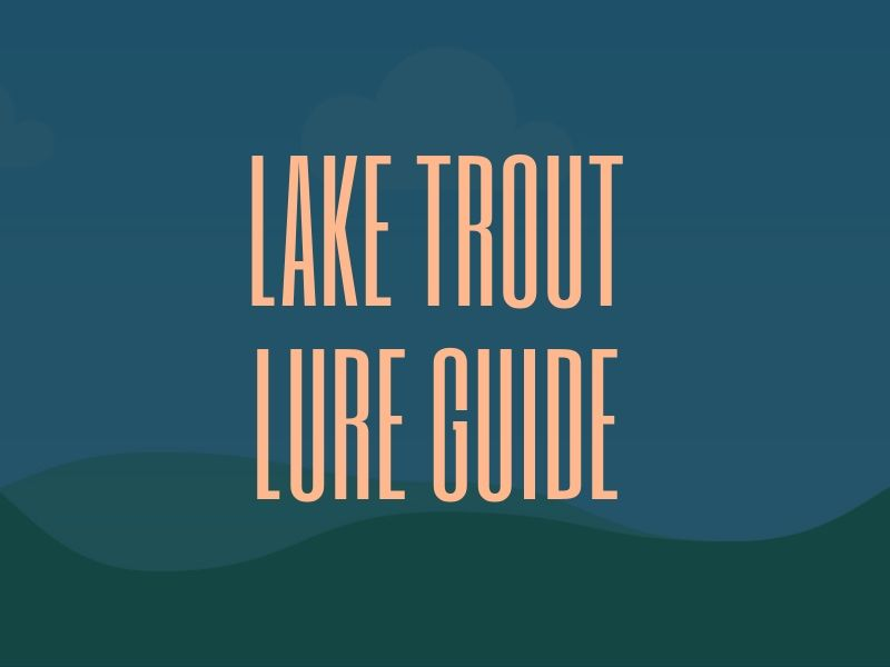 Best Lures for Lake Trout