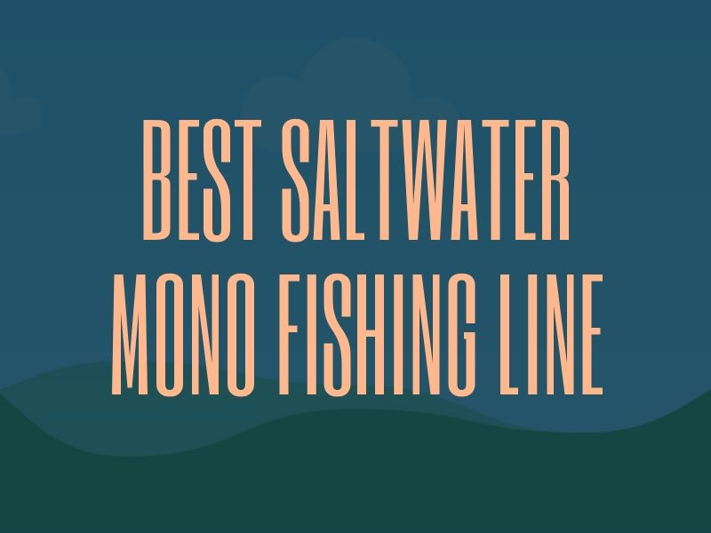 Best Mono Fishing Line for Saltwater