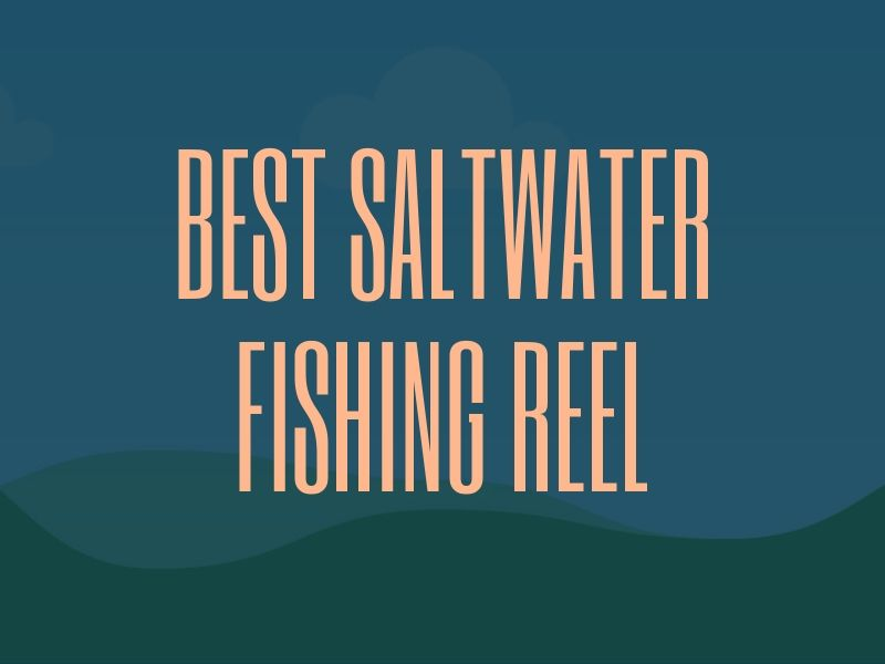 Best Saltwater Fishing Reel