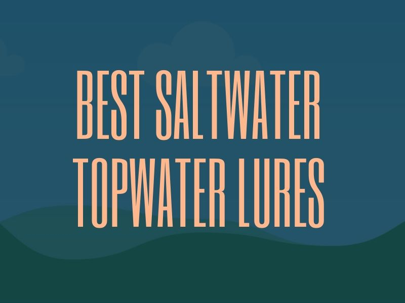 Best Topwater Lures for Saltwater Fishing