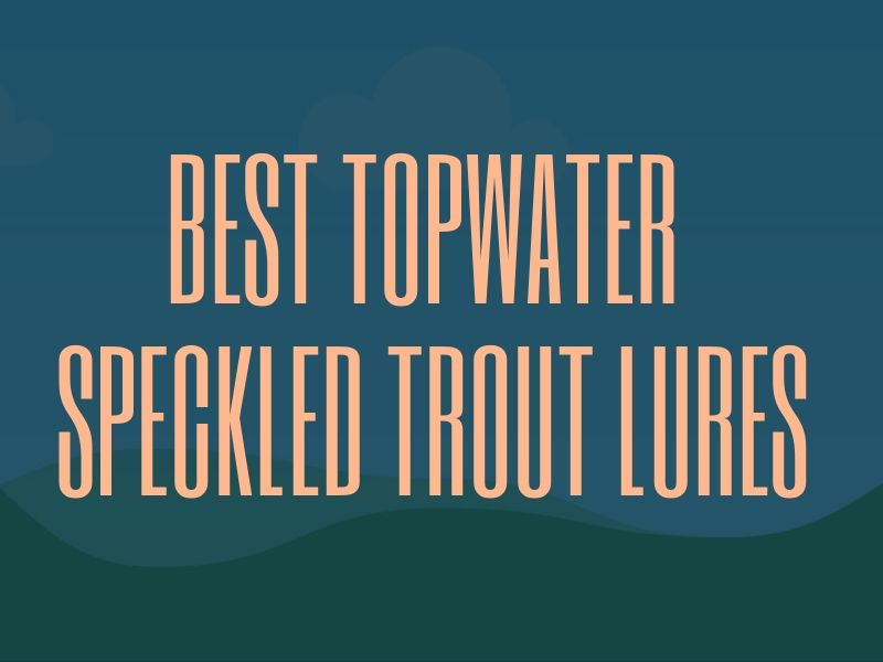 Best Topwater Speckled Trout Fishing Lures
