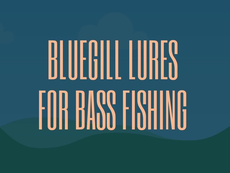 Bluegill Lures for Bass Fishing