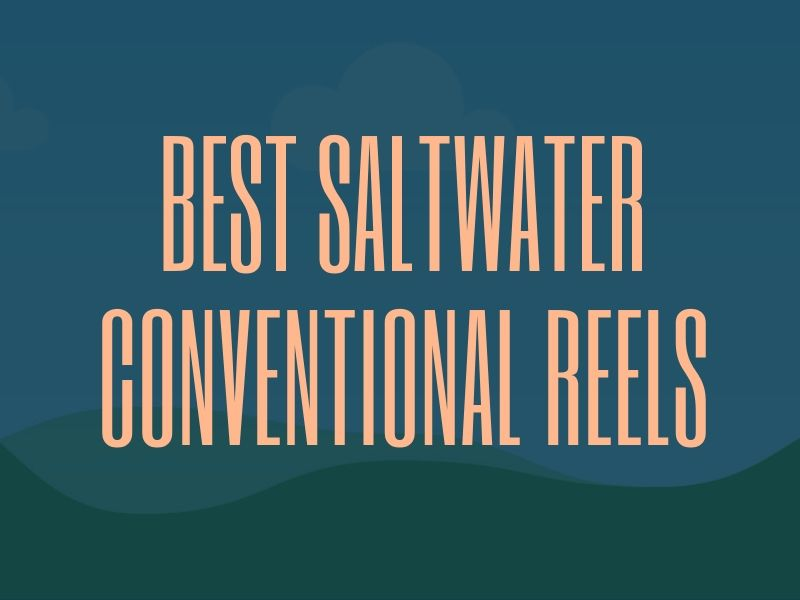 Saltwater Conventional Reels Guide