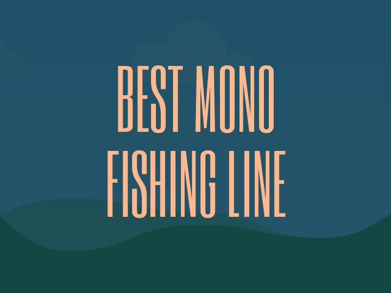 Best Mono Fishing Line Guide