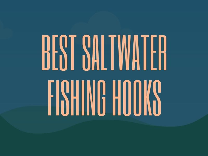 Best Saltwater Fishing Hooks