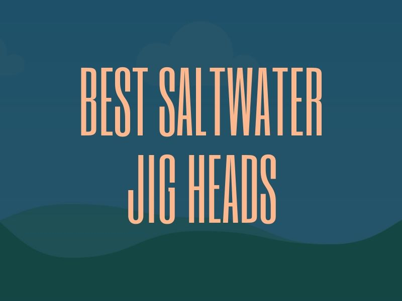 Best Saltwater Jig Heads