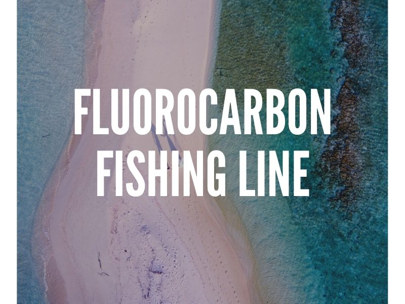 Fluorocarbon Fishing Line Guide