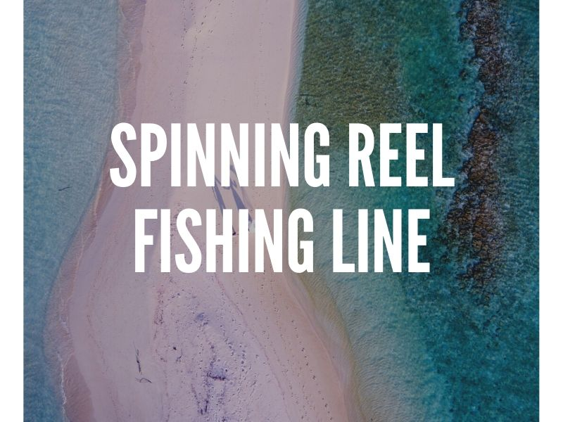 Spinning Reel Fishing Line Guide