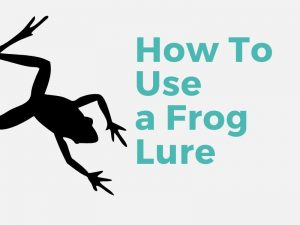 How To Use a Frog Lure