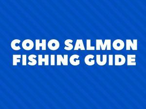 Coho Salmon Fishing Tips