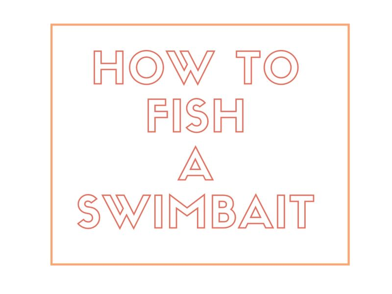 How to Fish A Swimbait