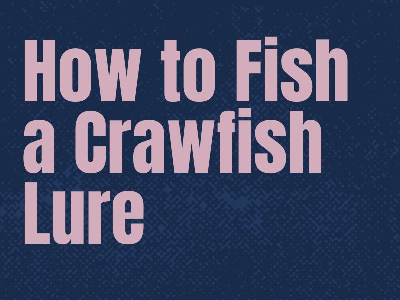 How to Fish a Crawfish Lure