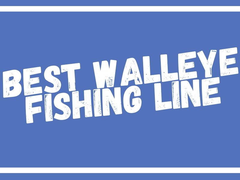 Fishing Line for Walleye