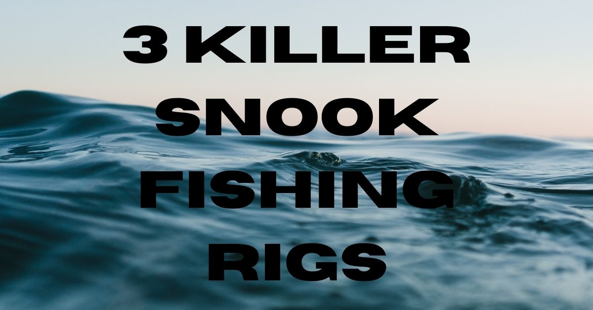 Snook-Rigs