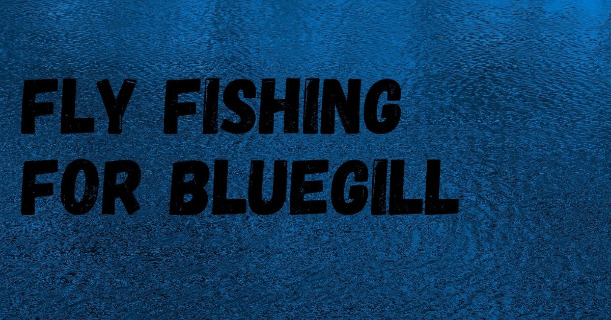 fly fishing panfish
